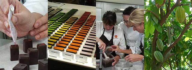 The Story of Ecole Chocolat